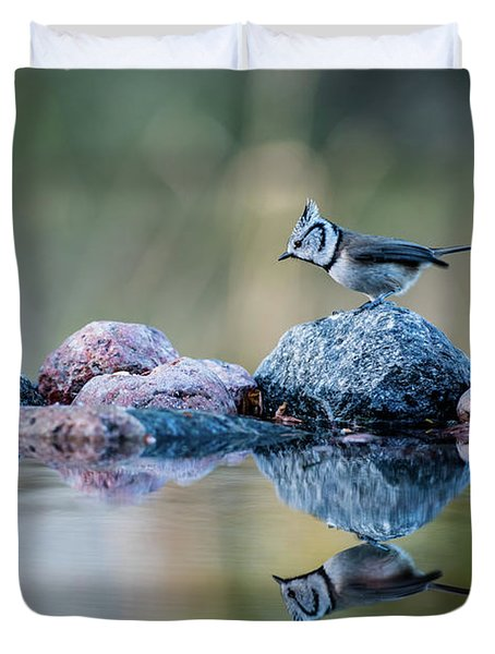 Crested Tit's Reflection Duvet Cover