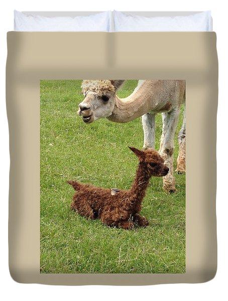 Cria Alpaca Duvet Cover
