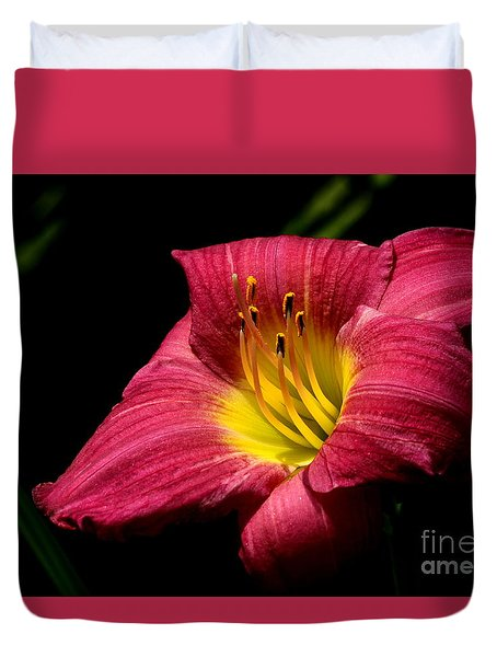 Duvet Cover featuring the photograph Crimson Day Lily by Kenny Glotfelty