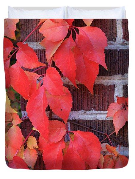Crimson Leaves Duvet Cover