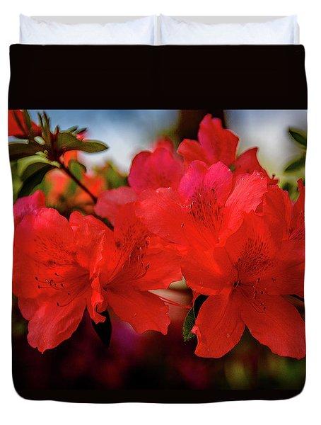 Crimson Lights Duvet Cover