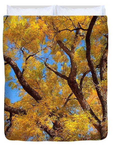 Crisp Autumn Day Duvet Cover by James BO  Insogna