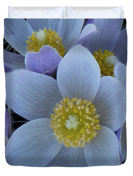Crocus Blossoms Duvet Cover