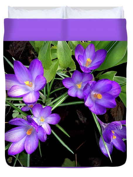 Crocus First To Bloom Duvet Cover