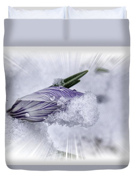 Crocus Pushing Through Snow Duvet Cover by Constantine Gregory