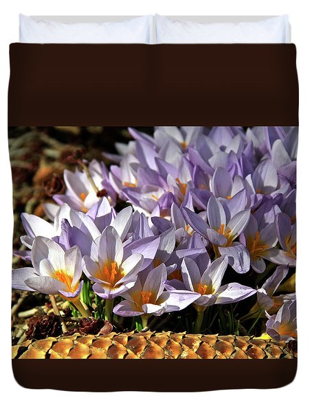Crocuses Serenade Duvet Cover by Ed  Riche