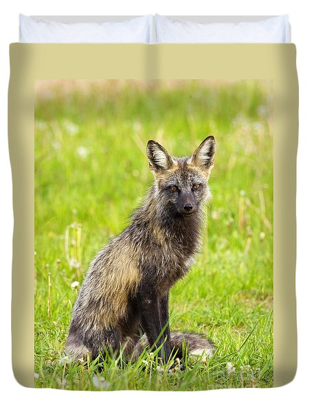 Duvet Cover featuring the photograph Cross Fox by Aaron Whittemore