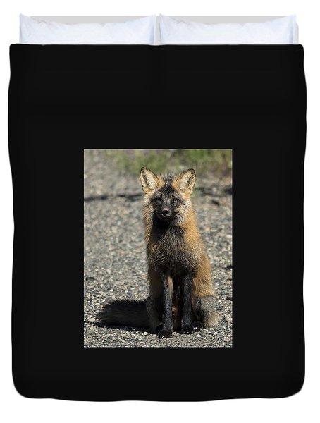 Cross-fox Wonder Duvet Cover