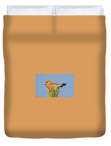 Crossbill Duvet Cover