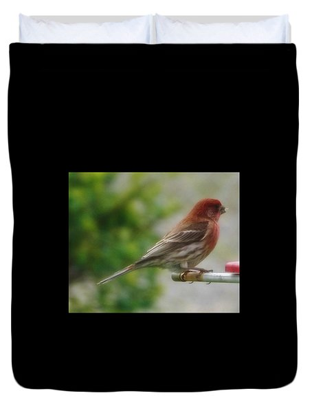 Crossbill Male      Spring      Indiana Duvet Cover