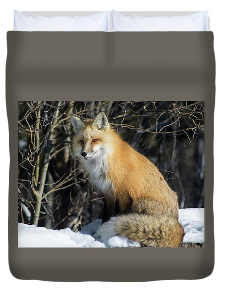 Crossroads With A Red Fox Duvet Cover