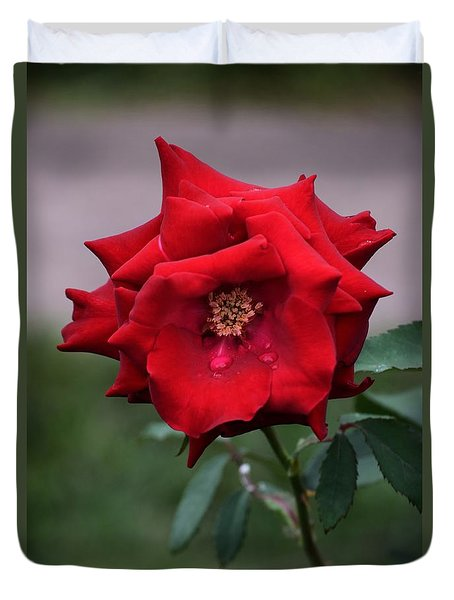 Duvet Cover featuring the photograph Crying Rose by Mark McReynolds