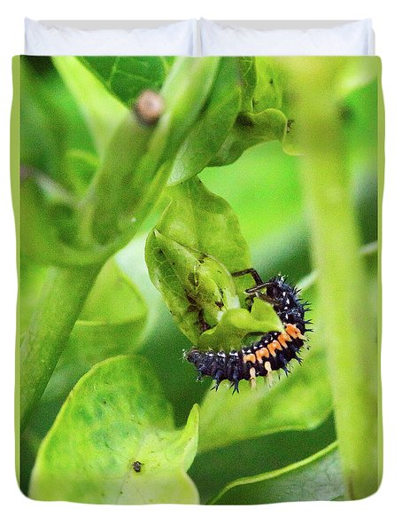 Crysomelid Larva Feeding On Aphids 2 Duvet Cover
