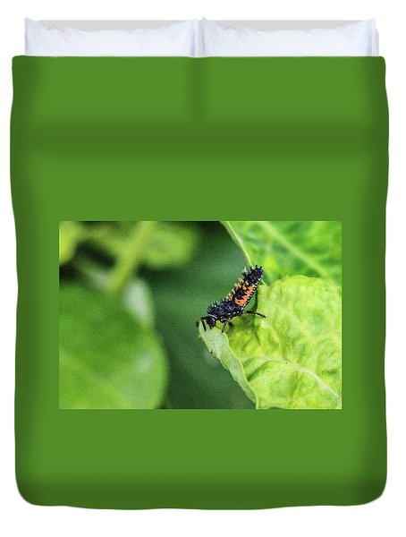 Crysomelid Larva Looking For Food Duvet Cover