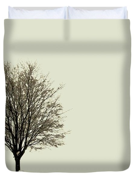 Crystal Lake In Winter Duvet Cover by Desiree Paquette