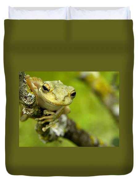 Cuban Tree Frog 000 Duvet Cover