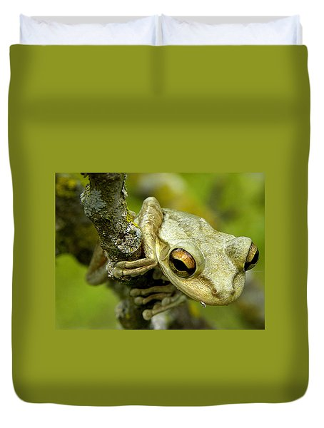Cuban Tree Frog  Duvet Cover