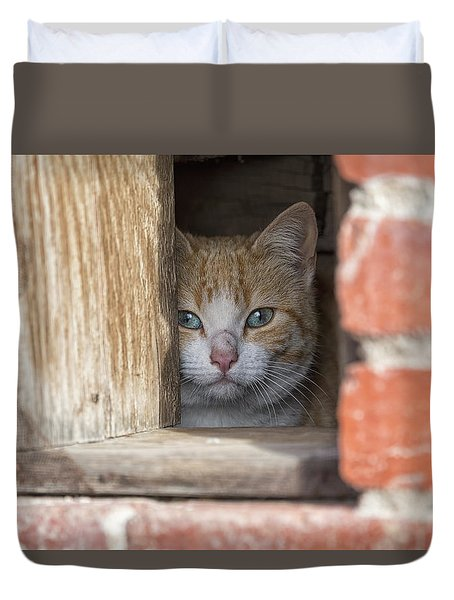 Cubby Cat Duvet Cover