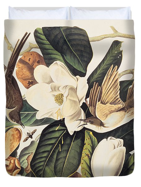 Cuckoo On Magnolia Grandiflora Duvet Cover by John James Audubon