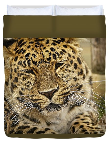 Duvet Cover featuring the photograph Cuddles  by Gary Bridger