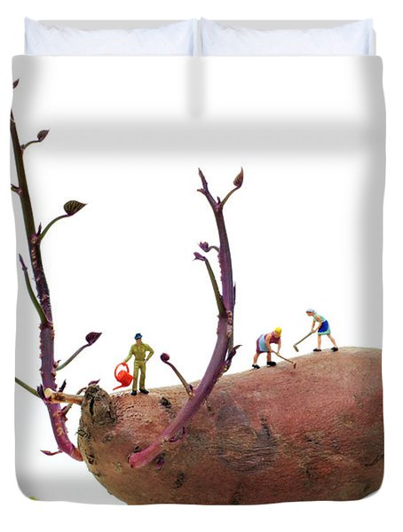 Cultivation On A Sweet Potato Duvet Cover by Paul Ge