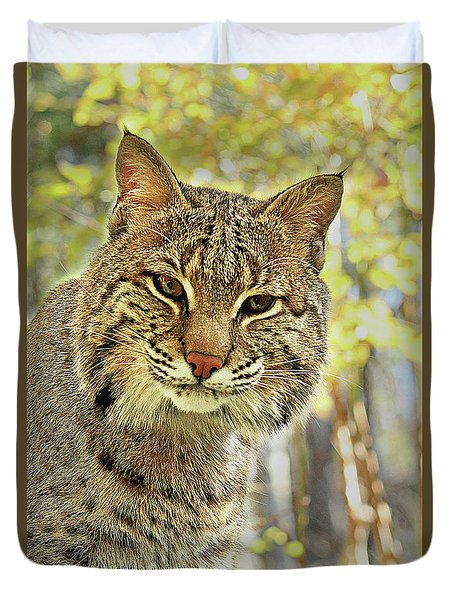 Duvet Cover featuring the photograph Curiosity The Bobcat by Jessica Brawley