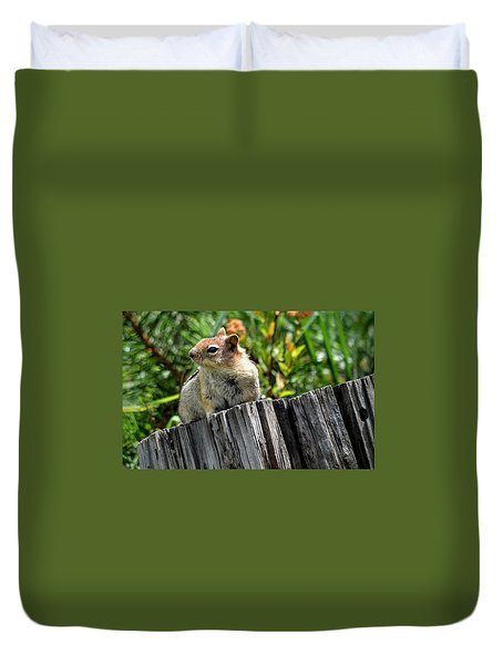 Curious Chipmunk Duvet Cover