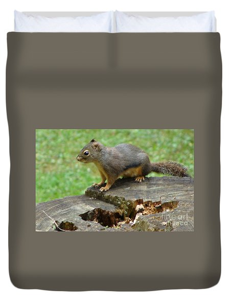 Duvet Cover featuring the painting Curious Squirrel by Rod Jellison