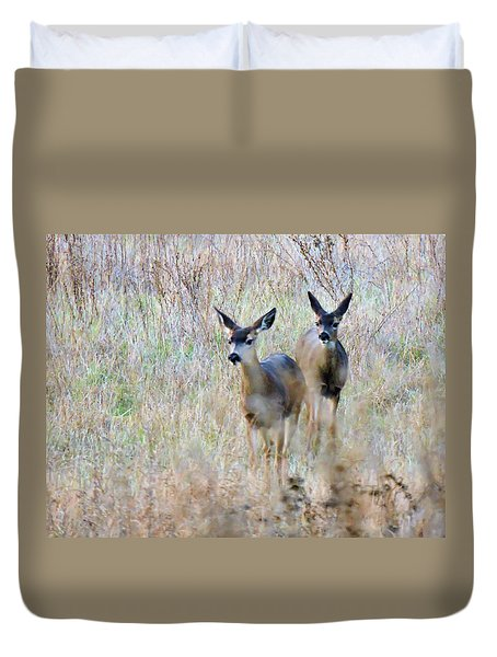 Curious Duo Duvet Cover