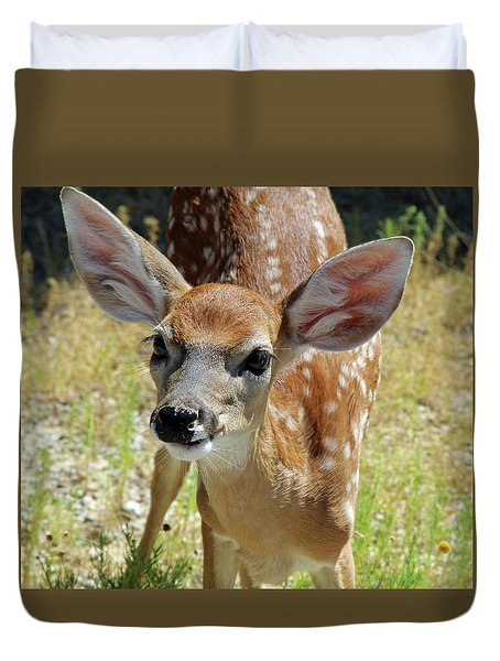 Curious Fawn Duvet Cover