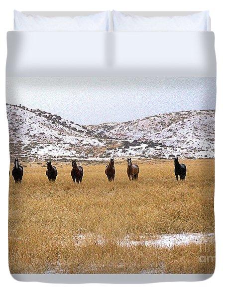 Curious Horses Duvet Cover