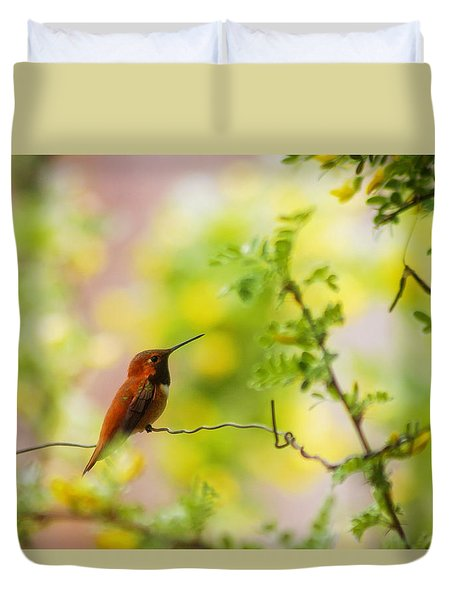 Curious Hummingbird Duvet Cover