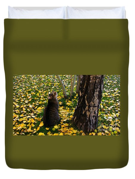 Curious  Duvet Cover by Janice Westerberg