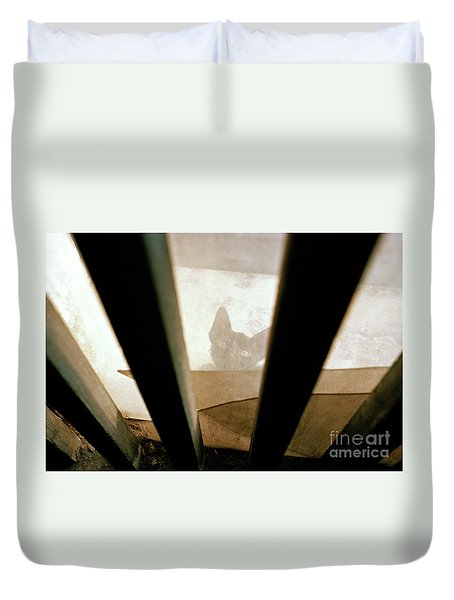Curious Kitten Duvet Cover