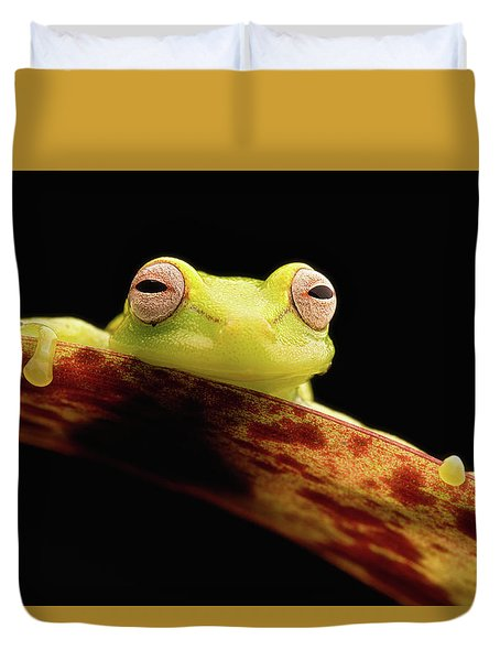 Curious Little Amazonian Tree Frog Duvet Cover