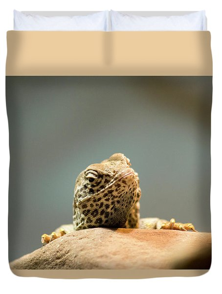 Curious Lizard Duvet Cover