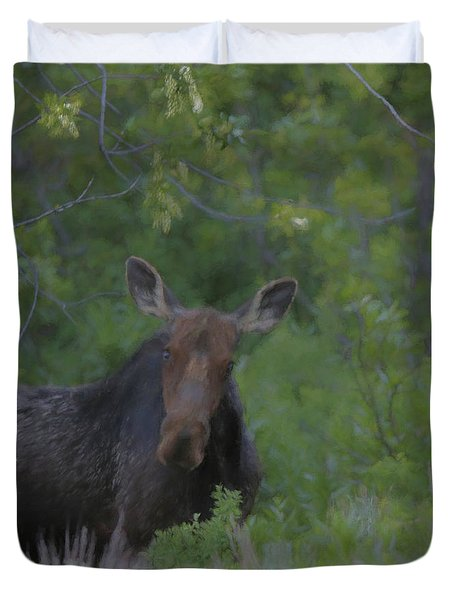 Curious Moose Duvet Cover