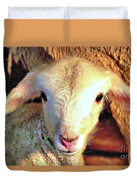 Curious Newborn Lamb Duvet Cover