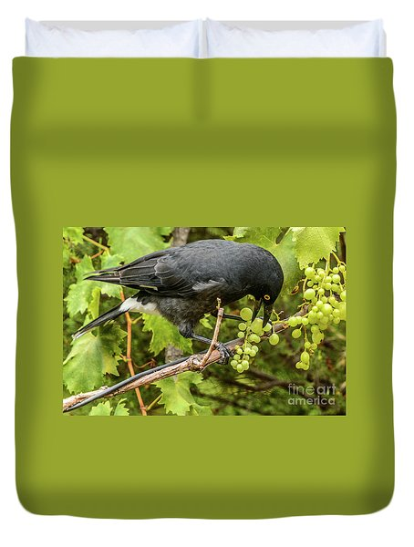 Currawong On A Vine Duvet Cover