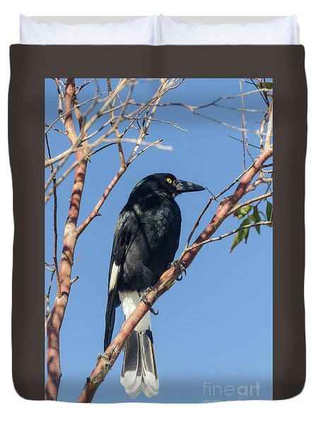 Currawong Duvet Cover