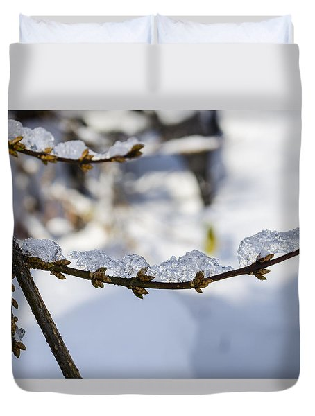 Curved Clumps Of Ice Duvet Cover