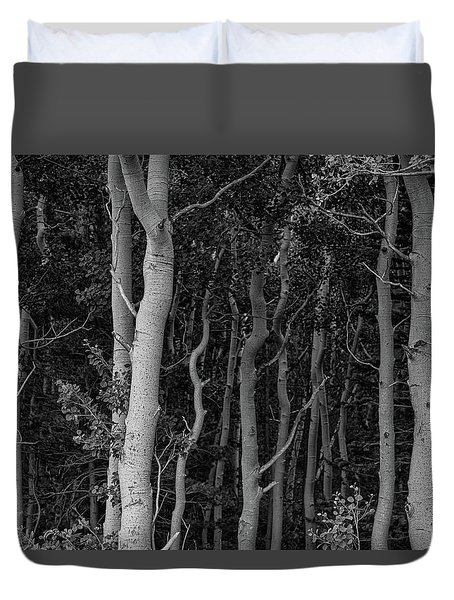 Duvet Cover featuring the photograph Curves Of A Forest by James BO Insogna