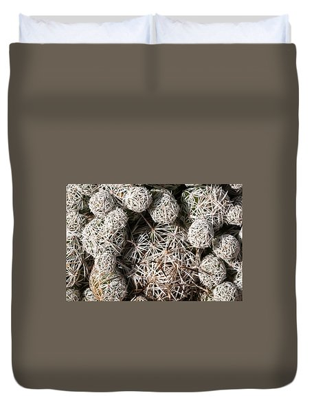 Cute Cactus Ball Duvet Cover by Catherine Lau
