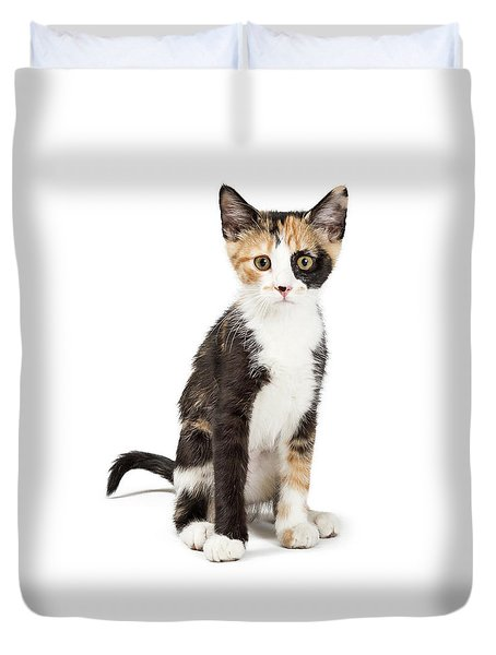 Cute Calico Kitten Sitting Looking Forward Isolated Duvet Cover