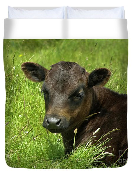 Cute Cow Duvet Cover