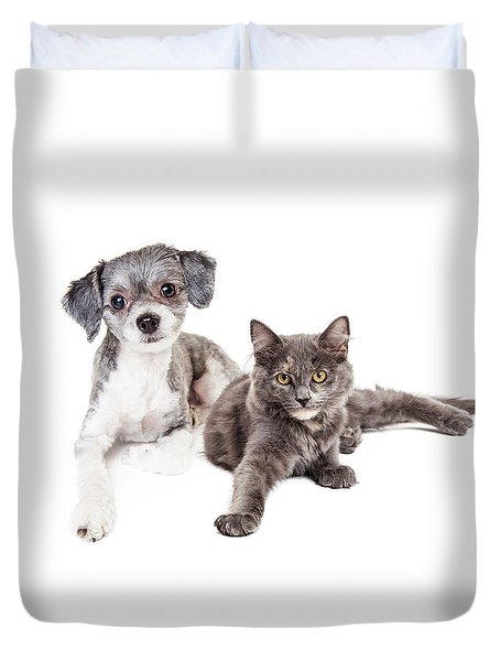 Cute Grey Kitten And Puppy Laying Together Duvet Cover