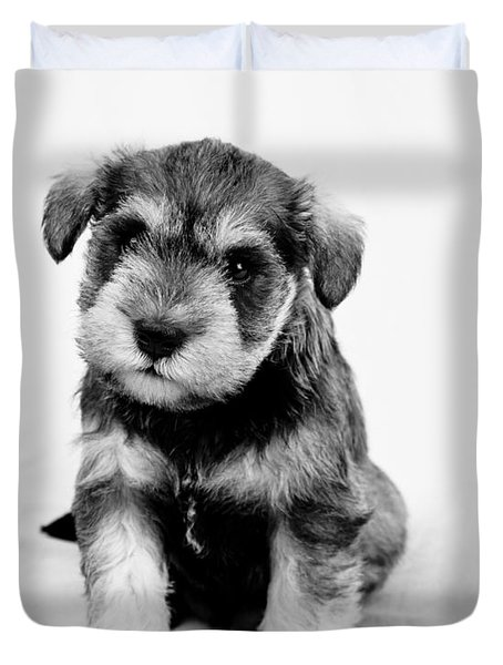 Cute Puppy 1 Duvet Cover