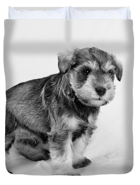 Cute Puppy 2 Duvet Cover