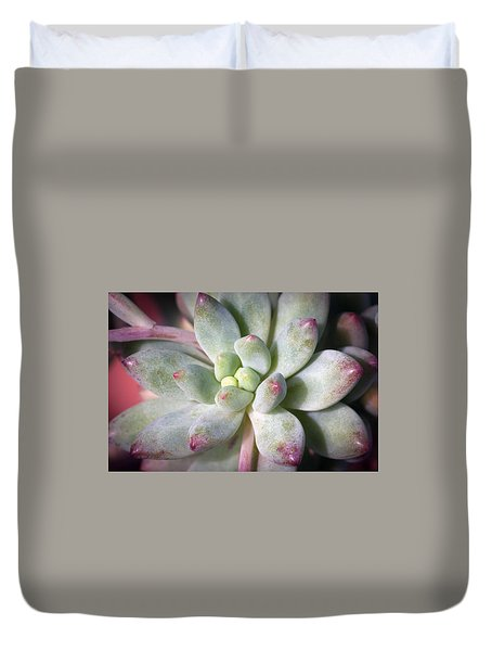Duvet Cover featuring the photograph Cute Succulent Plant by Catherine Lau