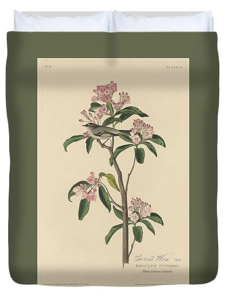 Cuvier's Wren Duvet Cover by Dreyer Wildlife Print Collections